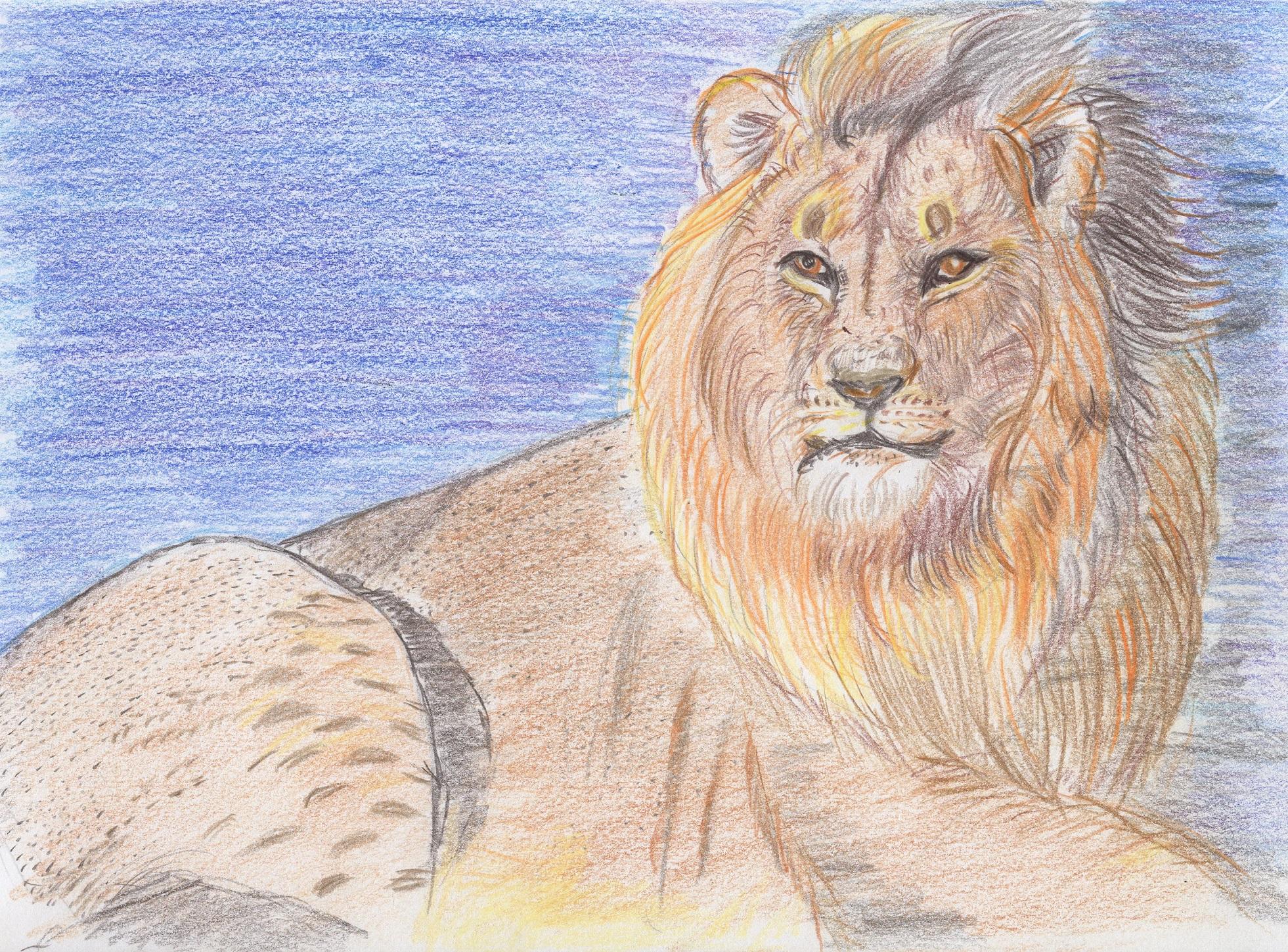 ルバング島のライオン