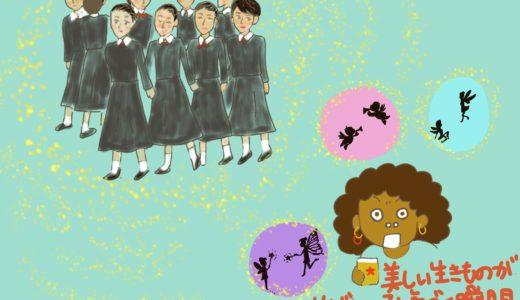 みさ日記・しょうもない話「11月が終わる」「宝塚じゃないわよ」「紫鯨亭直さん」